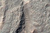 Crescentic Cratered Mound