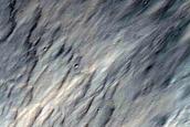 Gully in Crater in Terra Sirenum