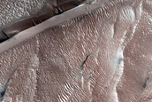 North Polar Site to Monitor Defrosting on Dunes
