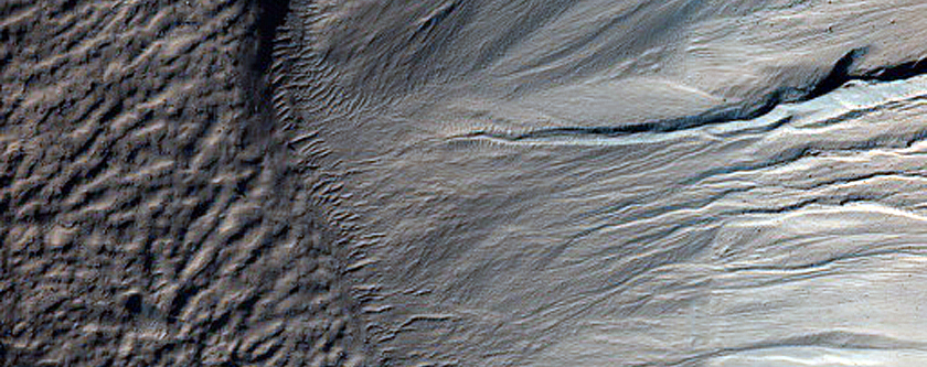Monitor Frost in Corozal Crater