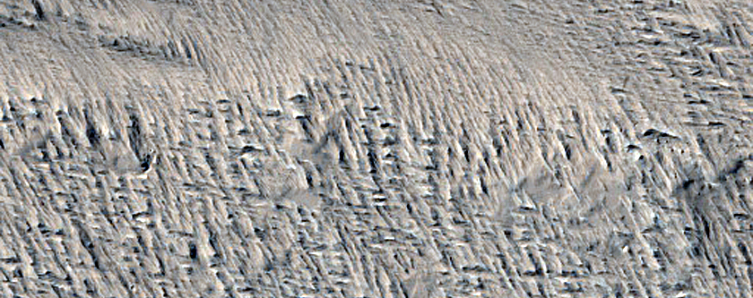 Lava Flow Margin Contacts