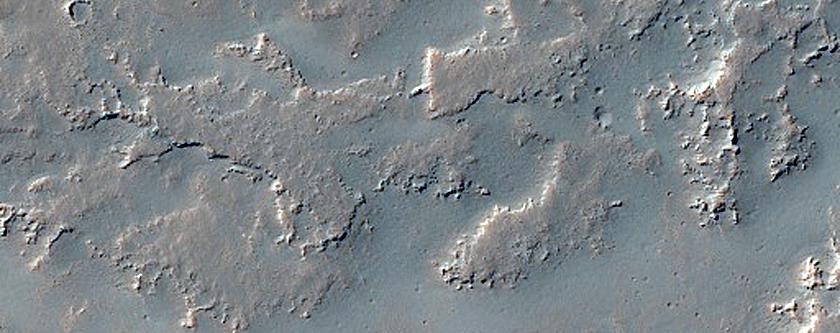 Digitate Flow Lobes in Daedalia Planum