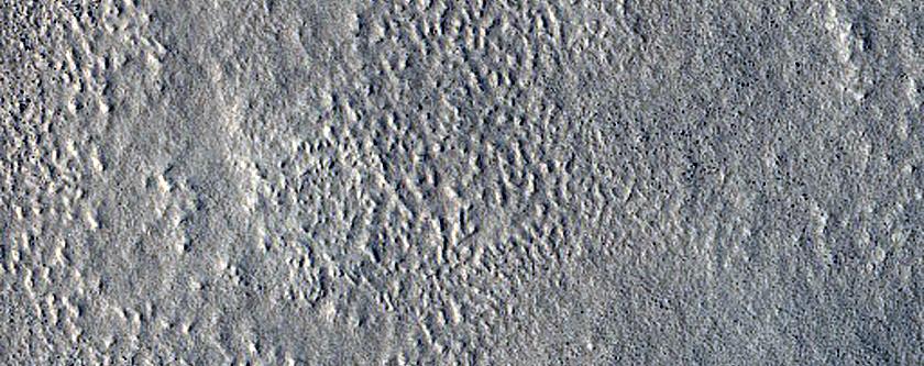 Ridges in Arcadia Planitia