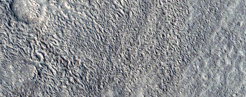 Ridges in Tempe Terra