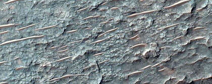 Tyrrhena Terra Crater Floor