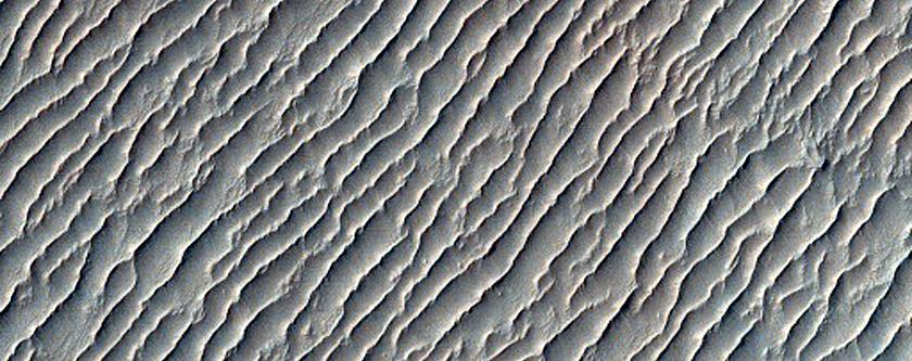 Terrain Sample in Melas Chasma