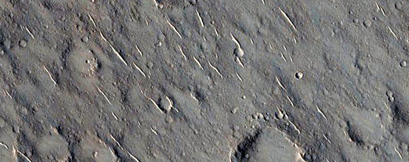 Isidis Planitia