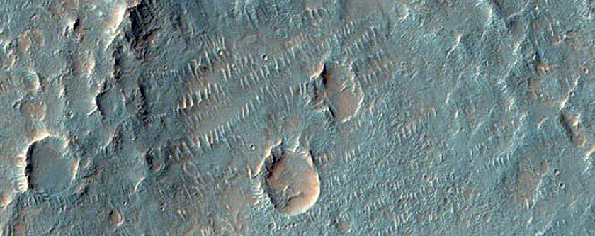 Possible Phyllosilicate-Rich Terrain in Nirgal Vallis