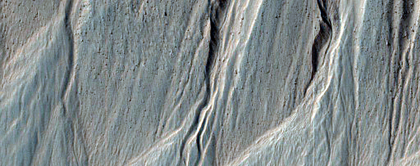 Gullies and Arcuate Ridges in Nereidum Montes