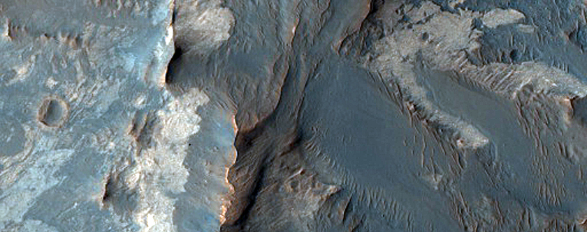 Phyllosilicates and Hydrated Silica-Rich Terrain in Ius Chasma