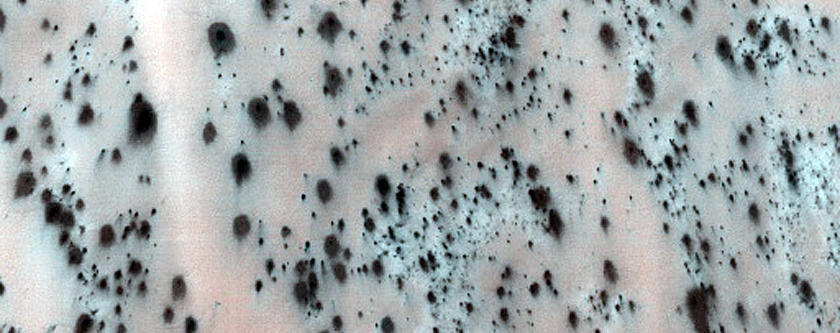 Active Dunes with Star-Shaped Fans