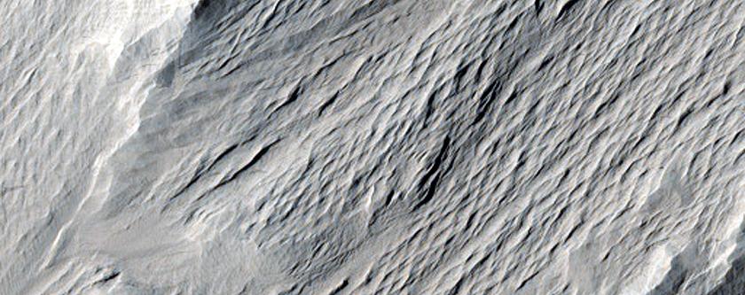 Nicholson Crater