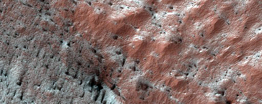 Active Dunes Emerging from South Polar Layered Deposits Scarp