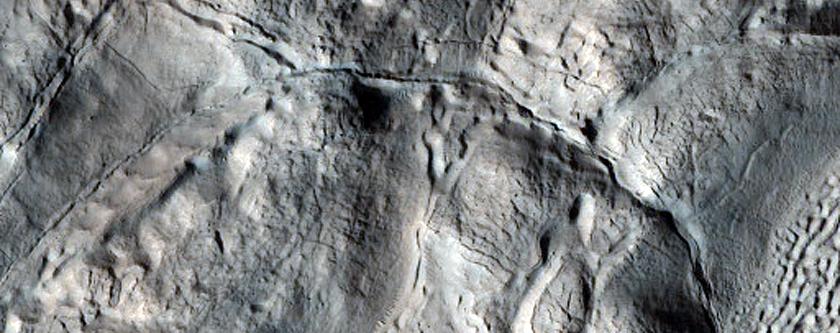 Ribbed Terrain and Brain Terrain in Deuteronilus Mensae