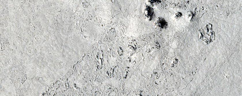 Cerberus Palus Lava