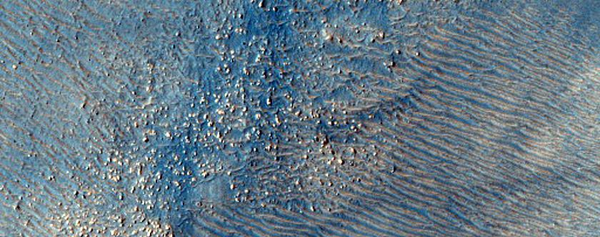 Dust-Raising Event and Streak Monitoring in Argyre Region