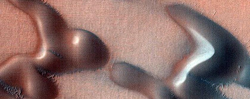 USGS Dune Database Entry 2579-573