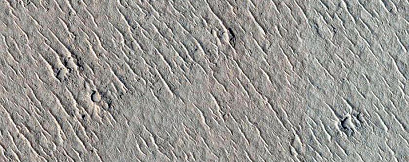 Flows in Cerberus Tholi