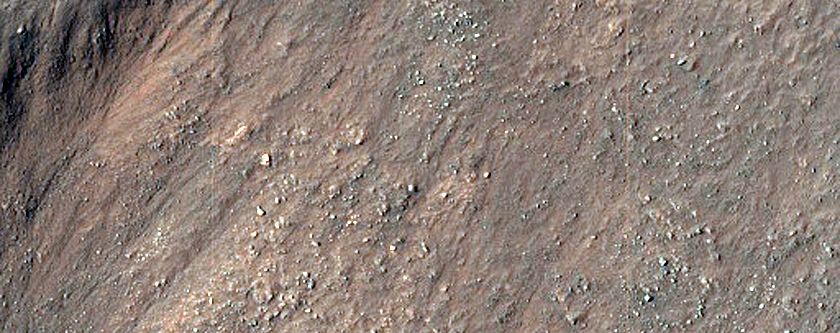 Gullies and Arcuate Ridges in Nereidum Montes