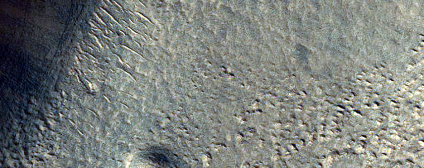 Potential Icy Flow in Phlegra Montes