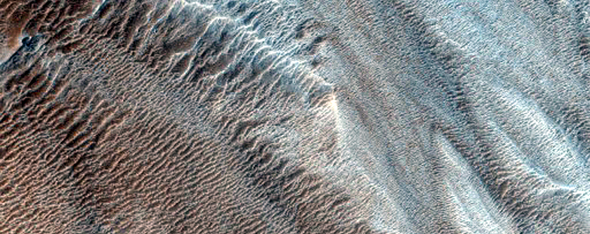 Ridges Associated with Large Lobate Flow Feature