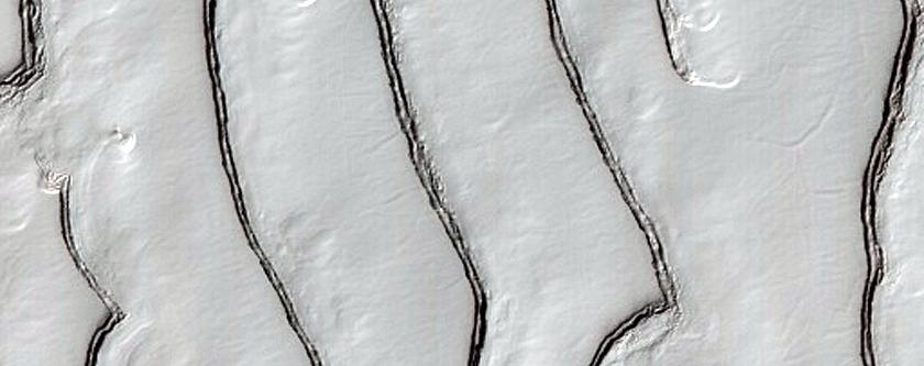 Fingerprint Terrain in Residual CO2 Cap