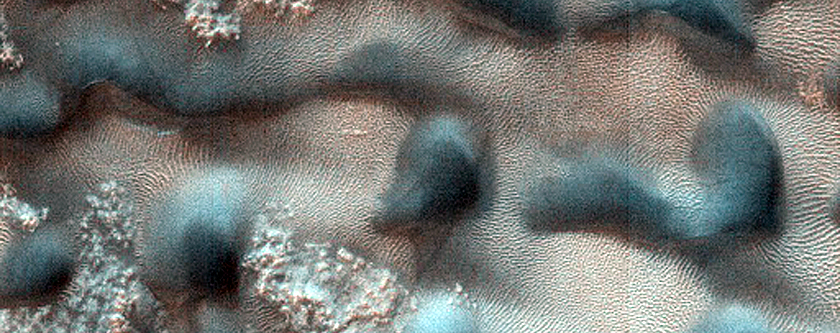 Dune Monitoring in Crater