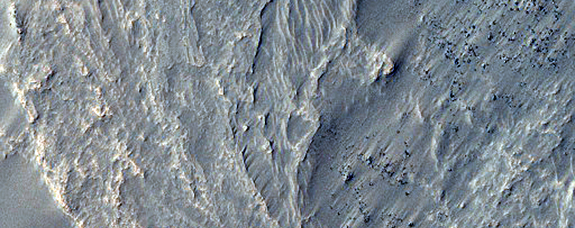 Complex of Intersecting Sinuous Ridges