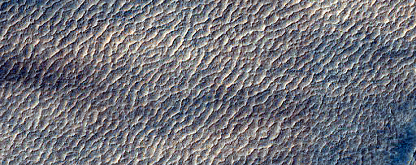 Dust-Raising Event and Streak Monitoring in Hellas Planitia