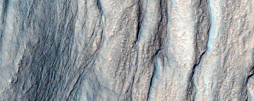 Gullies in Crater in Nereidum Montes