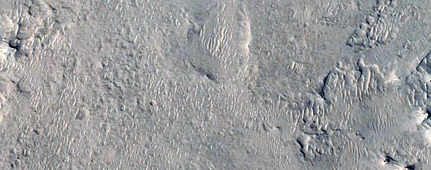 Ridge Network in Western Arabia Terra