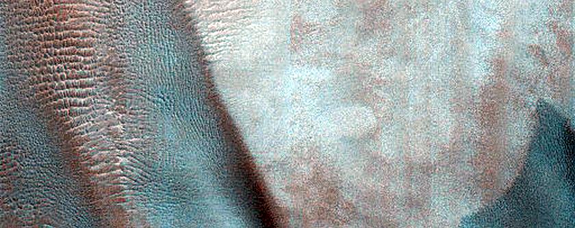 Dune Monitoring in Davies Crater