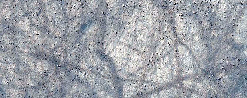 Monitoring Dust Devil Tracks in Terra Cimmeria
