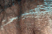 Monitoring Dust Devil Tracks in Northwest Casius Region