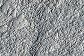 Amazonis Planitia Dust Devil Region