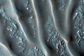 Northern Mid-Latitude Dune Monitoring
