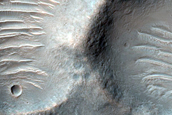 Terra Tyrrhena Crater Ejecta Phyllosilicates