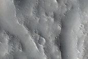 Terrain Sample