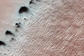 Dunes with New Spider Forming