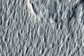 Lava Crust and Wakes in Amazonis Planitia