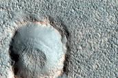 Landforms in Acidalia Planitia