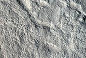 3-Kilometer Crater on Potential Ice-Rich Polygon Center in Utopia Planitia