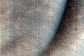 USGS Dune Database Entry Number 1189-689