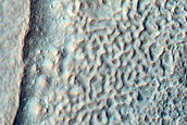 Patterned Crater Floor in Thaumasia Fossae
