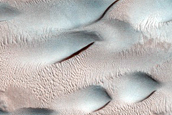 Dune Monitoring in Lyot Crater