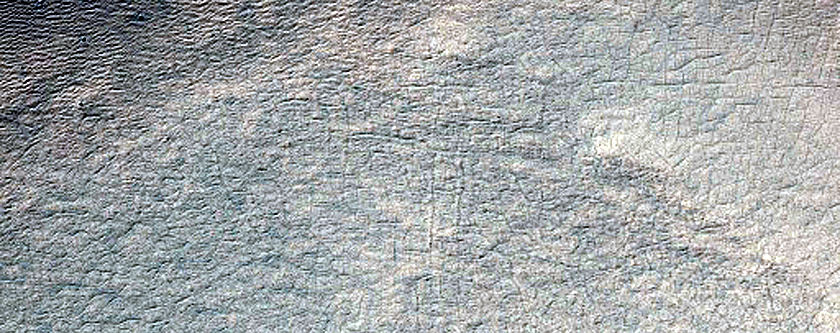 Monitoring Gully Activity in Sisyphi Planum