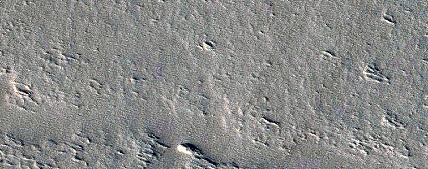 Tharsis Region Dust Storm Monitoring