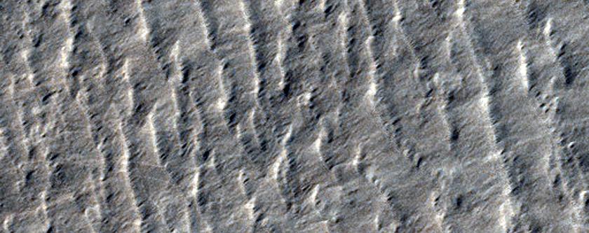 Barchanoid Dunes in Hellas Planitia