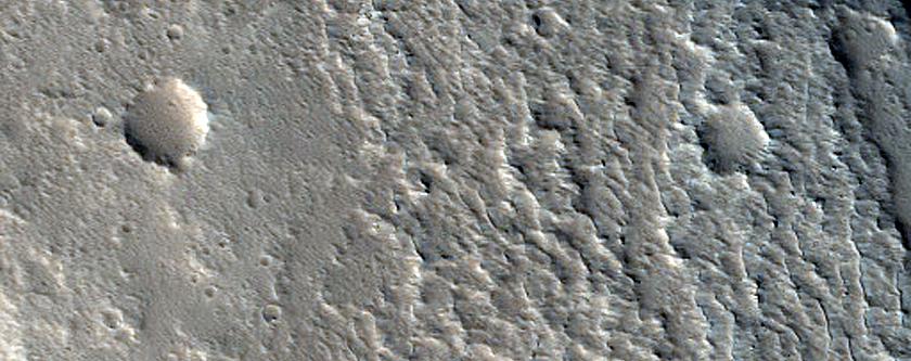 Ridges in Tempe Fossae