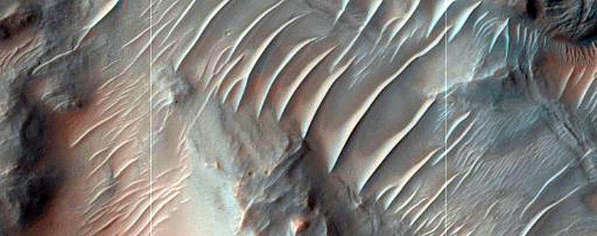 Phyllosilicate-Rich Terrain in Nirgal Vallis Wall